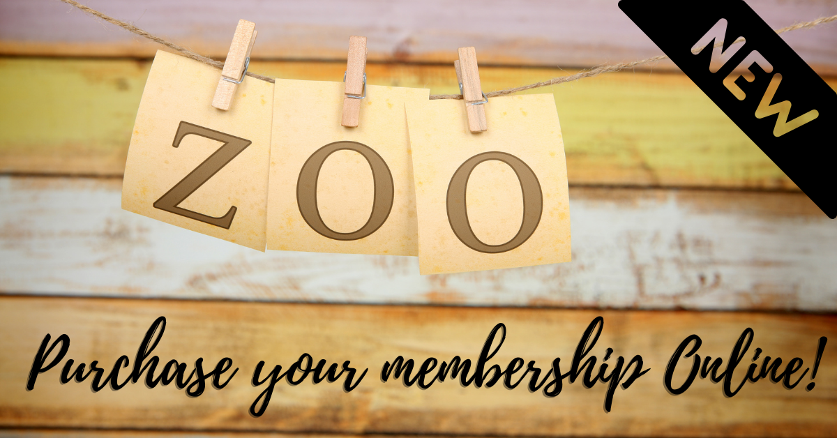 Purchase your zoo membership online!